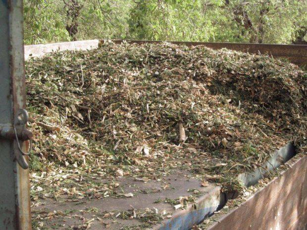 Datça'da Ücretsiz Kompost Eğitimi