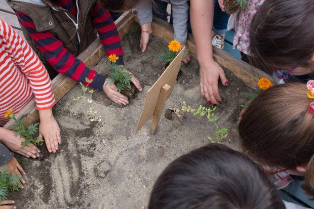 Çocuklarla Tohum Attık