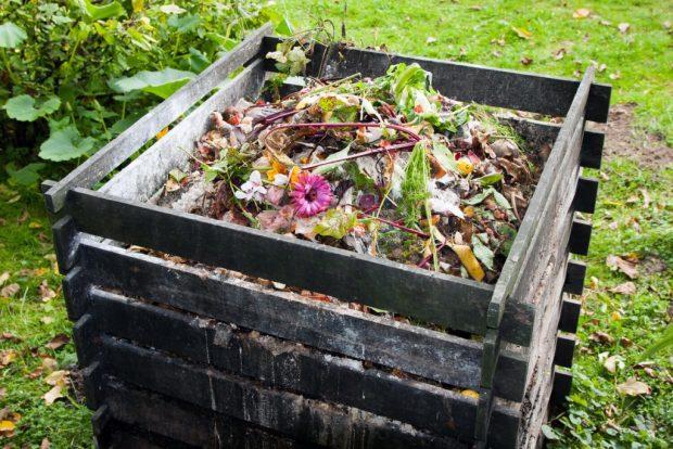 Kompost Rehberi'ne artık internetten ulaşabilirsiniz