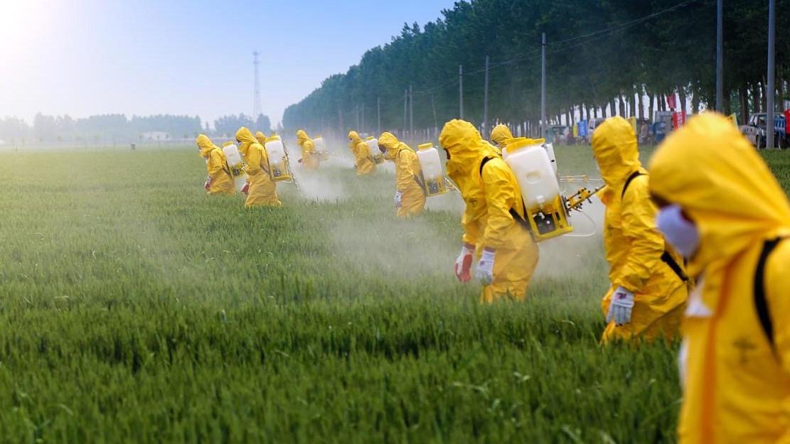 Pesticide-Spray-Agriculture-Farm-Farmer-Fertilizer-Field – Buğday ...