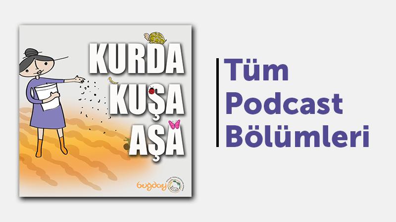 """""""Buğday'ın Ambarından Kurda, Kuşa, Aşa…"""" Podcast Serisi"""