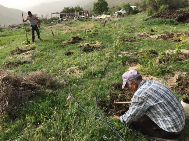 Güdül'de Gıda Topluluklarıyla Agroekolojik Dönüşüm: Neden gerekli ve neler yapabiliriz?
