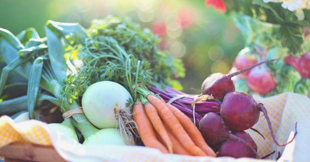 Mevsimsel Beslen – Kasım ayında hangi meyve ve sebzeler yetişir?