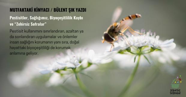 """Pestisitler, Sağlığımız, Biyoçeşitlilik Kaybı ve """"Zehirsiz Sofralar"""""""