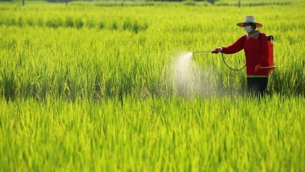 """""""Pestisit uygulamaları tohumdan başlıyor."""""""