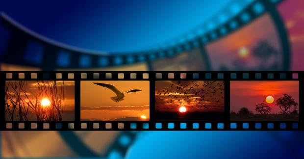Yaşamı savunan belgesel önerileri