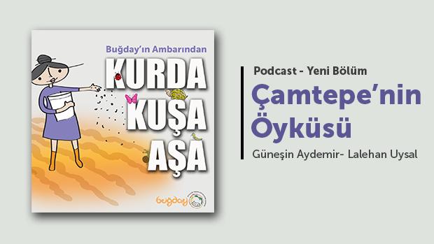 Çamtepe'nin Öyküsü – Podcast
