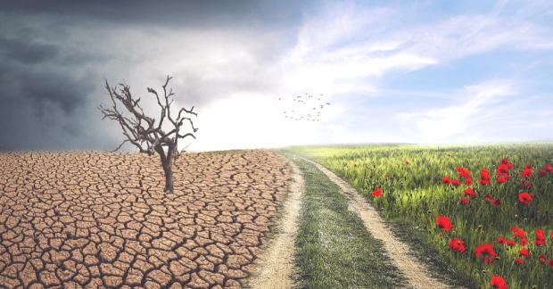 """""""Karbonsuzlaşmaya ve ekolojik dönüşüme ihtiyaç var."""""""