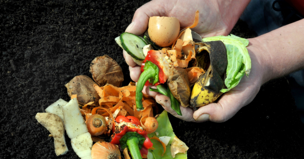 Sağlıklı toprak ve bitkiler için bokaşi kompostu