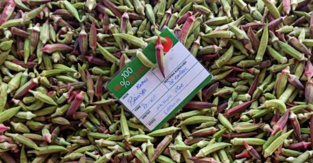 %100 Ekolojik Pazarlar güvencesiyle sağlıklı alışveriş