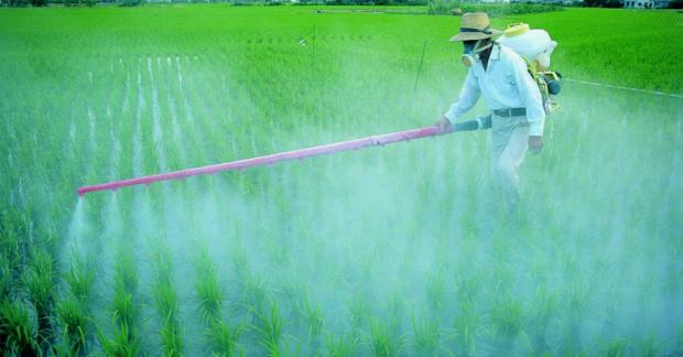 Sucul hayata en fazla zarar veren pestisitler – Bülent Şık