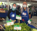 Kayseri'de organik tarım bereketi