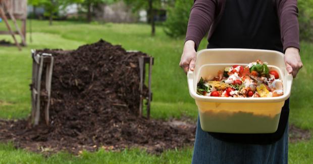 Kompost bir kabul meselesi