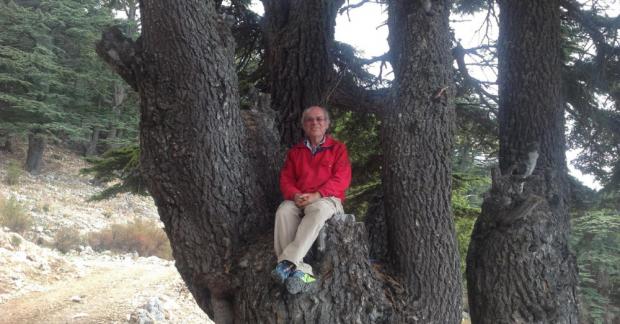 WWOOF Türkiye/TaTuTa Ekolojik Çiftlikleri: Ali Kışlak Orman