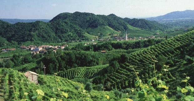 İtalya'da, belediyeler pestisit kullanımını yasaklayabilecek