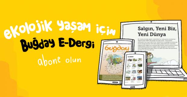 """Buğday E-Dergi'nin yeni sayısı yayınlandı: """"Yeni Normal""""e ekolojik bir bakış"""