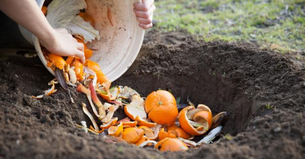 Kompost: Neden ve Nasıl – 2-3 Ekim 2021