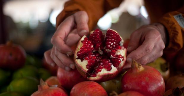 Dünya Gıda Günü: Tek yol gıdamıza sahip çıkmak